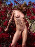 Yanna flower powerg3m5vds4li.jpg