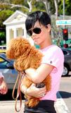 http://img102.imagevenue.com/loc757/th_02488_rihanna-puppy-4118-3_122_757lo.jpg